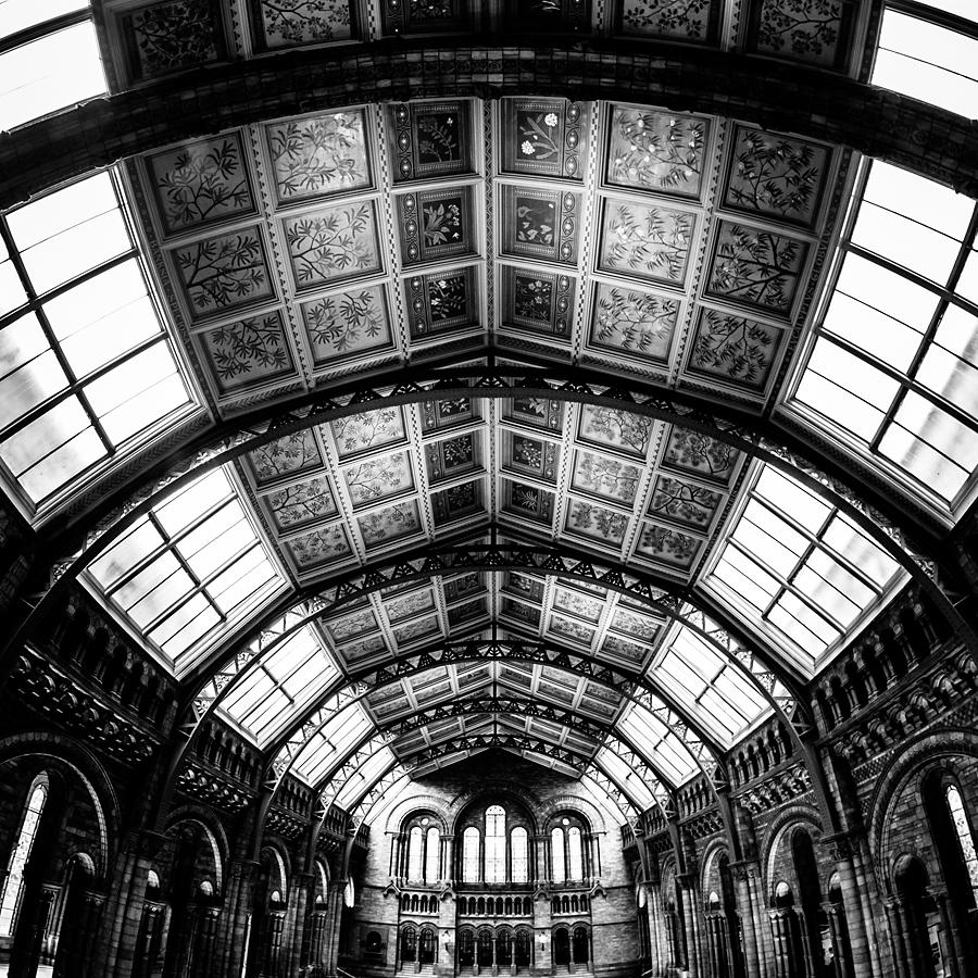 natural history museum1 Angielskie zawijasy   fotografia architektury