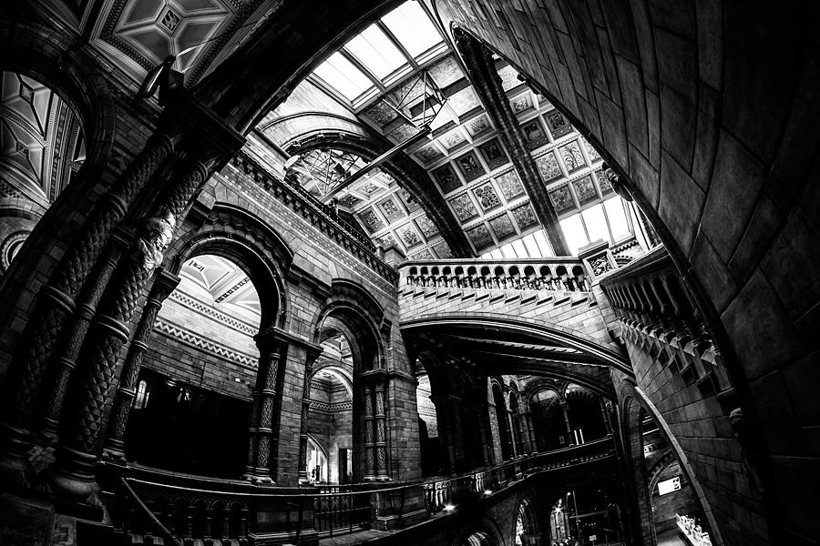 natural history museum2 Angielskie zawijasy   fotografia architektury