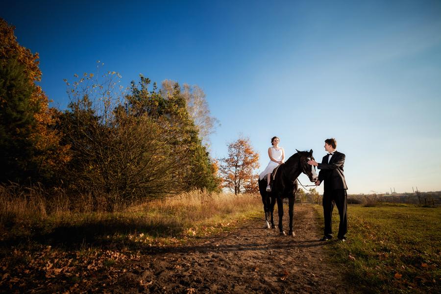 plener slubny z koniami 1 Ania i Michał   plener ślubny w stadninie koni i na zamku