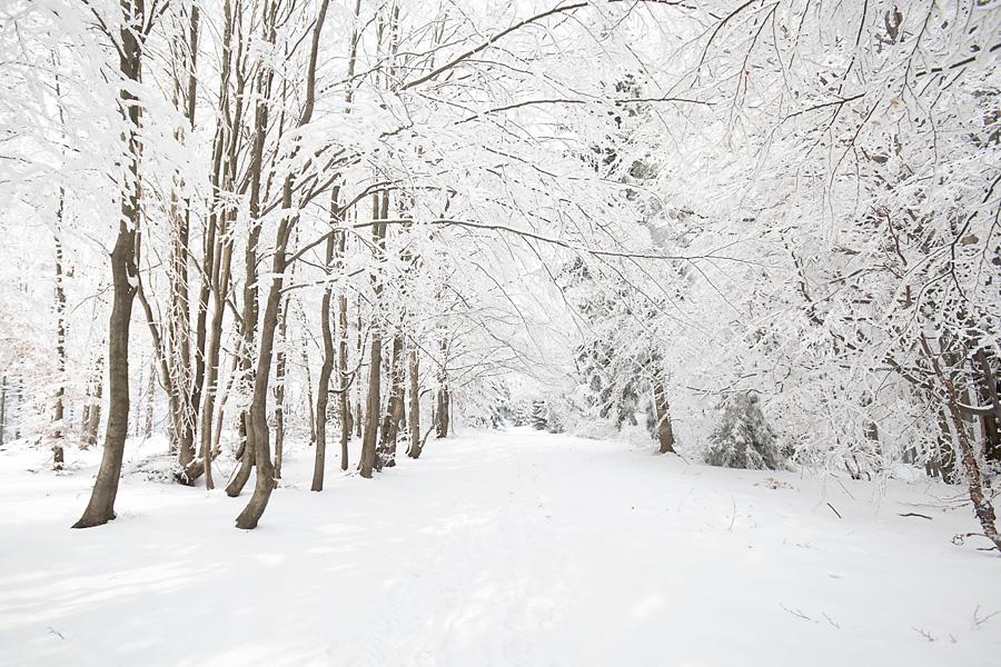 zima2 Ostatnie ślady zimy