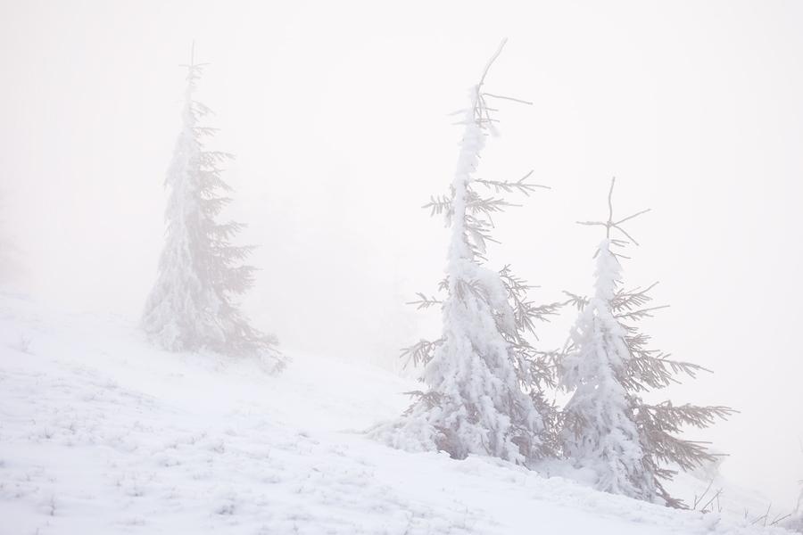 zima3 Ostatnie ślady zimy