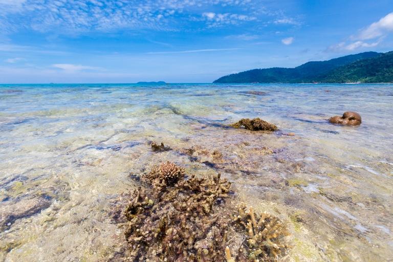 a malezja tioman 4(pp w768 h512) Malezyjskie wyspy   Tioman, Pangkor, Penang, Langkawi
